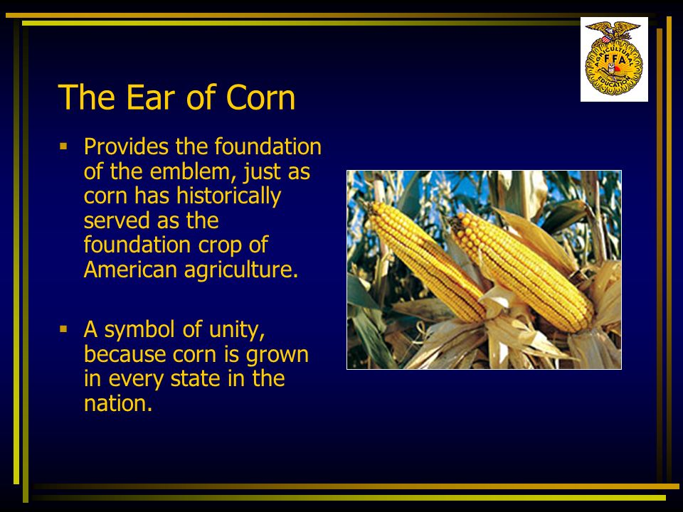 The Ear of Corn Provides the foundation of the emblem, just as corn has historically served as the foundation crop of American agriculture.