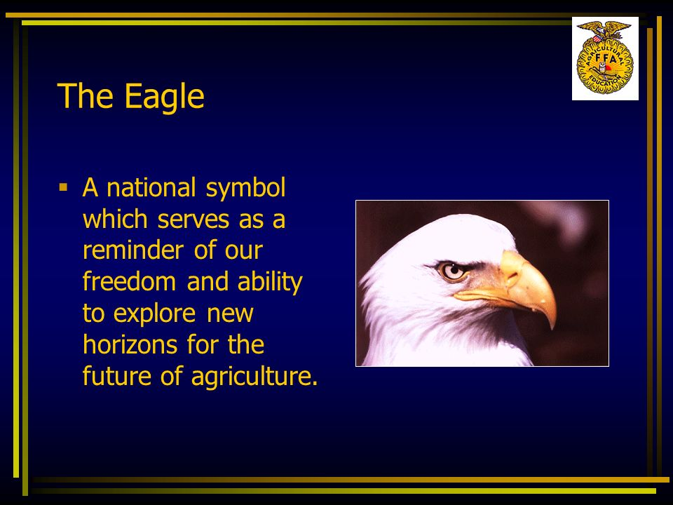 The Eagle A national symbol which serves as a reminder of our freedom and ability to explore new horizons for the future of agriculture.