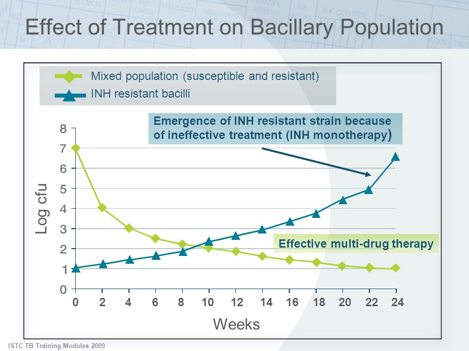 Effect of Treatment on Bacillary Population