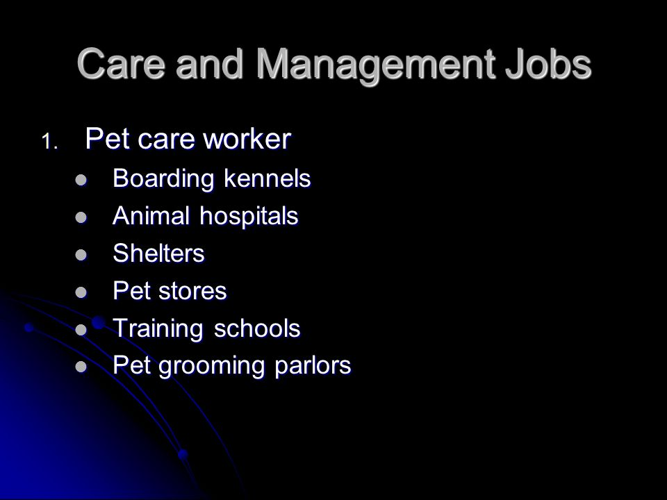 Care and Management Jobs