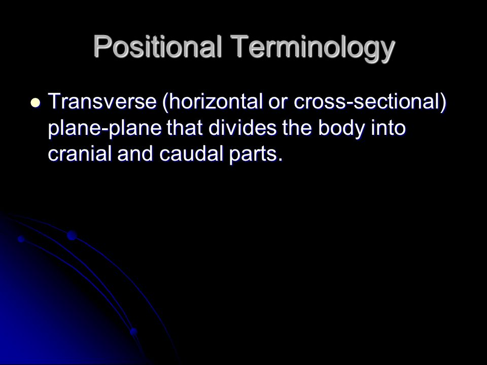Positional Terminology