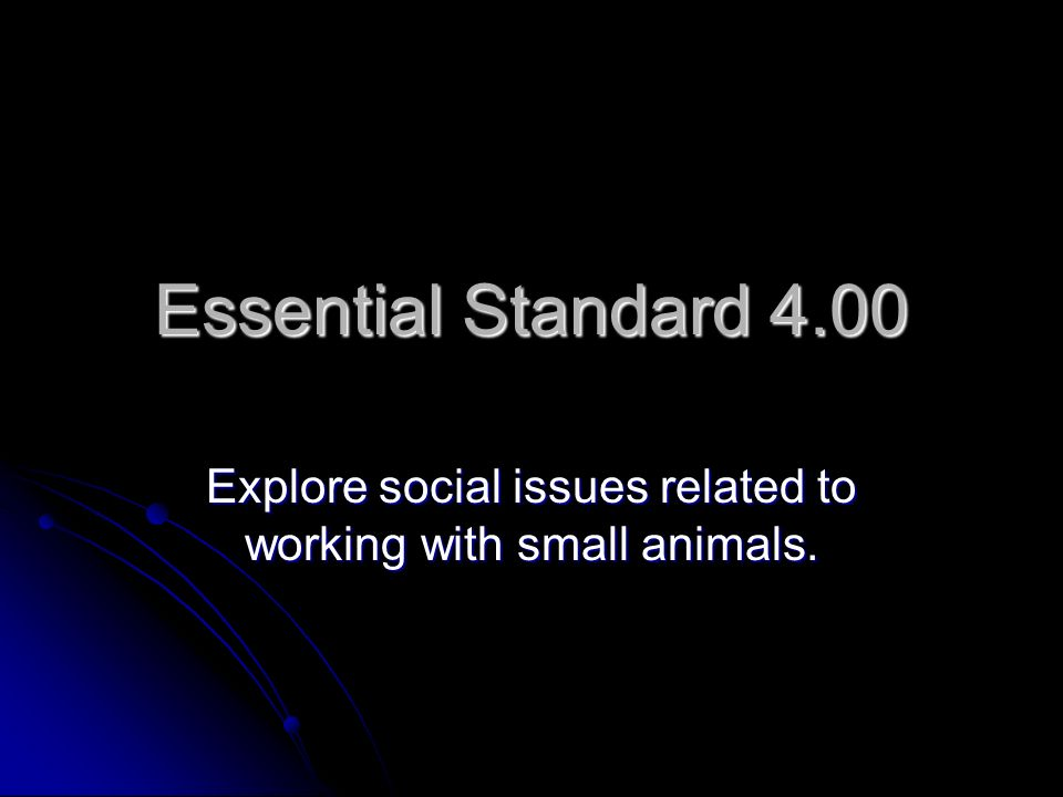Explore social issues related to working with small animals.