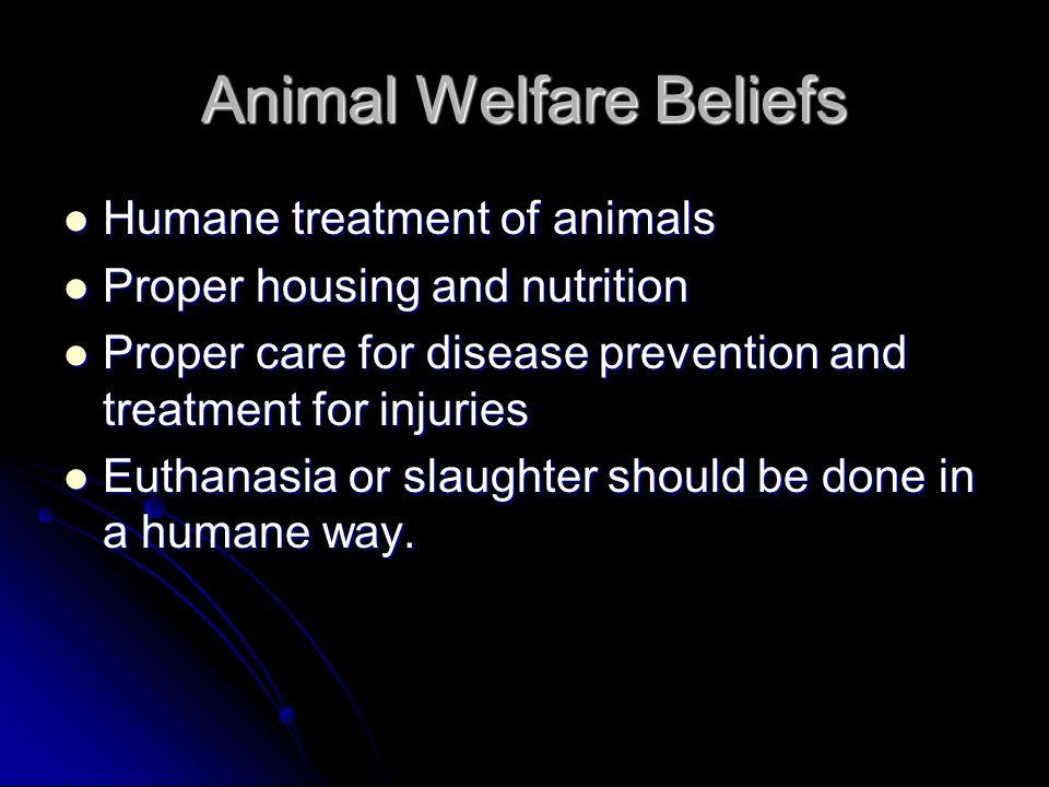Animal Welfare Beliefs