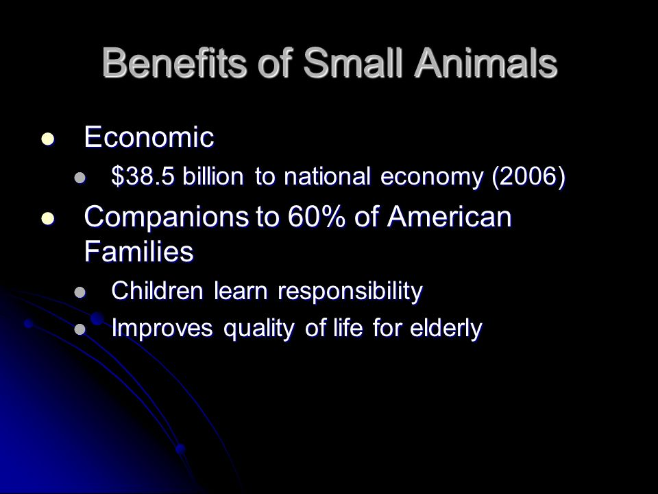 Benefits of Small Animals
