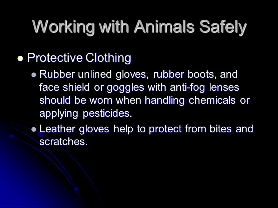 Working with Animals Safely