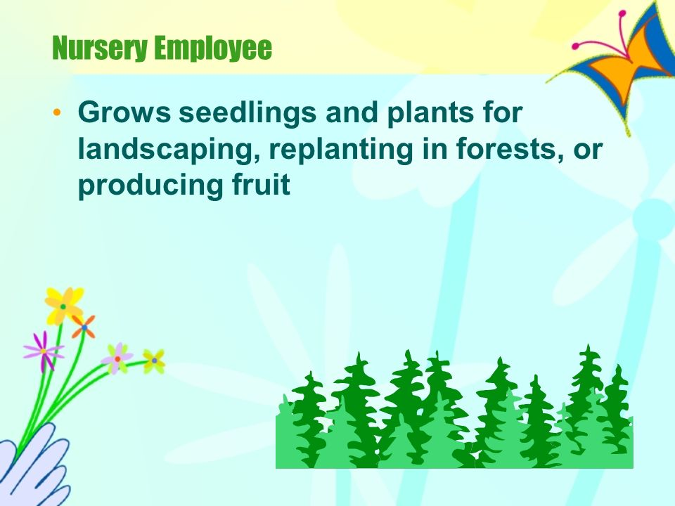 Nursery Employee Grows seedlings and plants for landscaping, replanting in forests, or producing fruit.