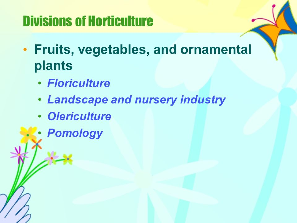 Divisions of Horticulture