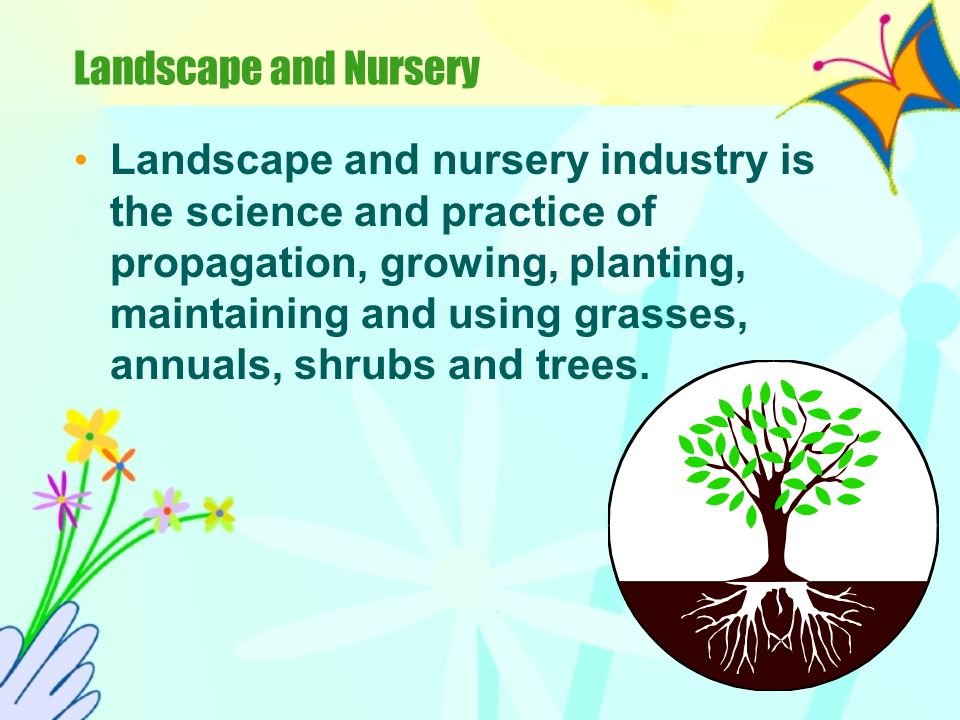 Landscape and Nursery