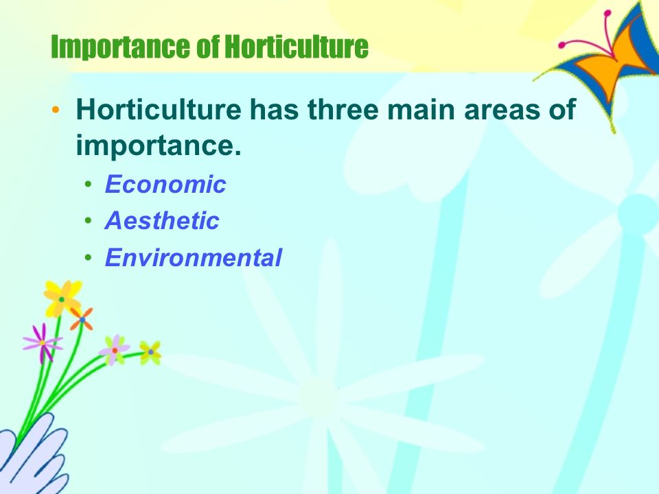 Importance of Horticulture