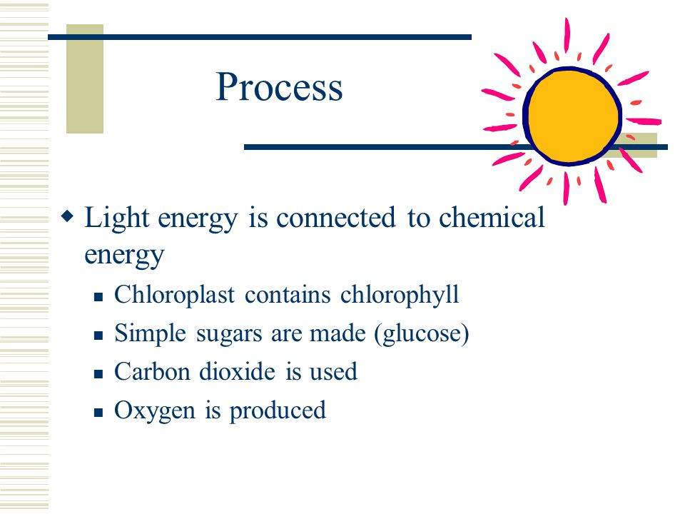 Process Light energy is connected to chemical energy