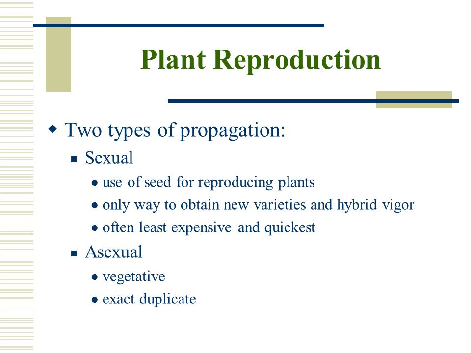Plant Reproduction Two types of propagation: Sexual Asexual