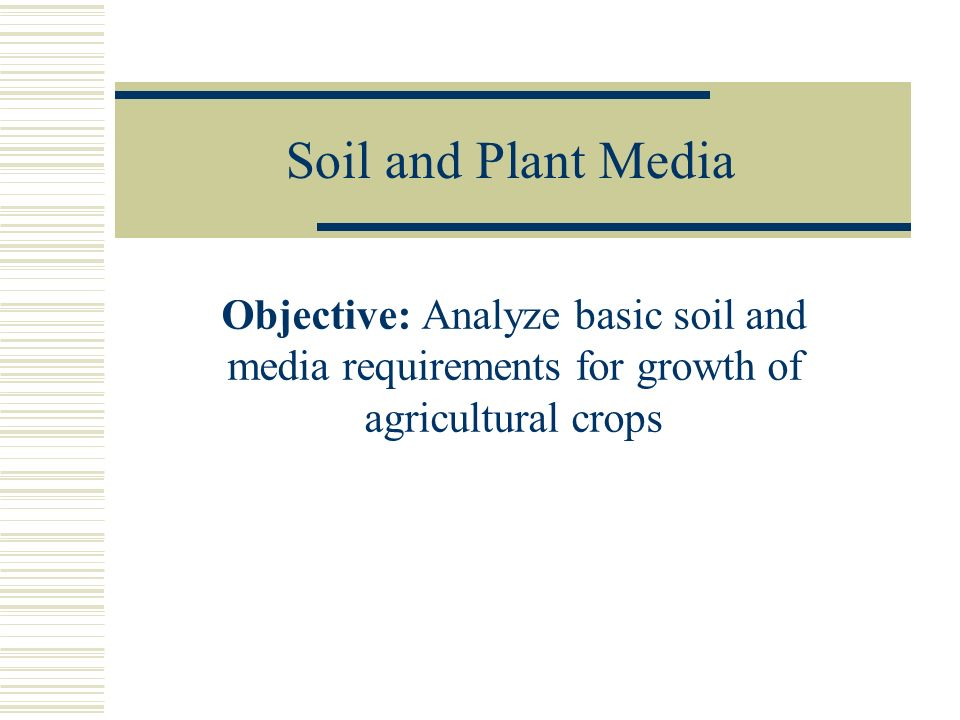 Soil and Plant Media Objective: Analyze basic soil and media requirements for growth of agricultural crops.