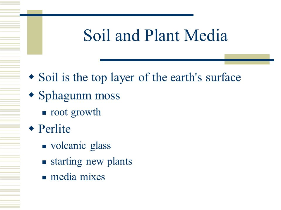 Soil and Plant Media Soil is the top layer of the earth s surface