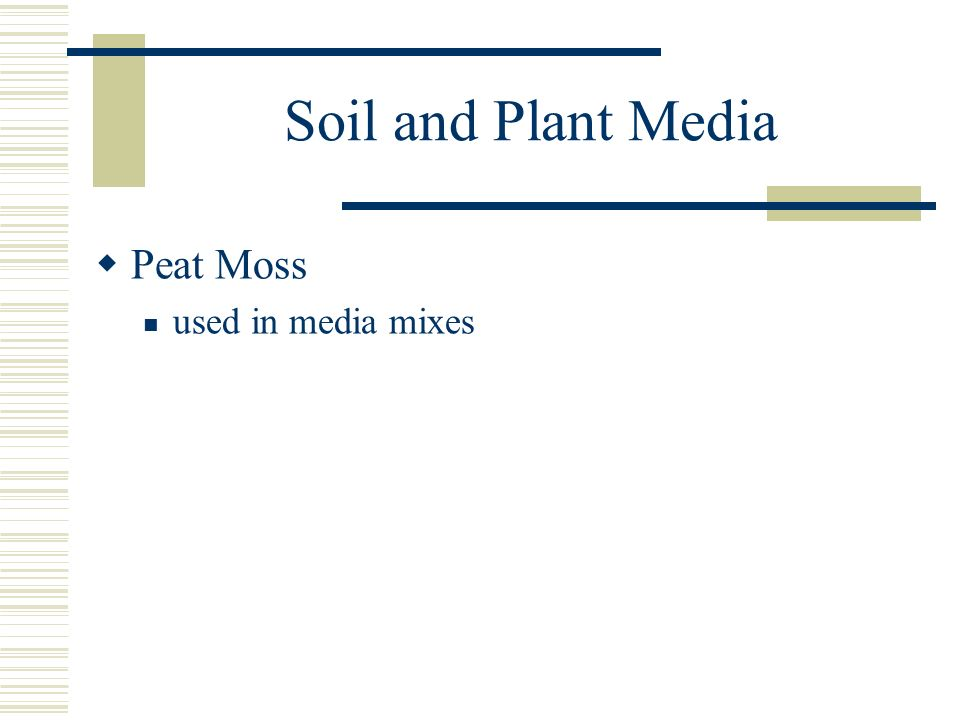 Soil and Plant Media Peat Moss used in media mixes