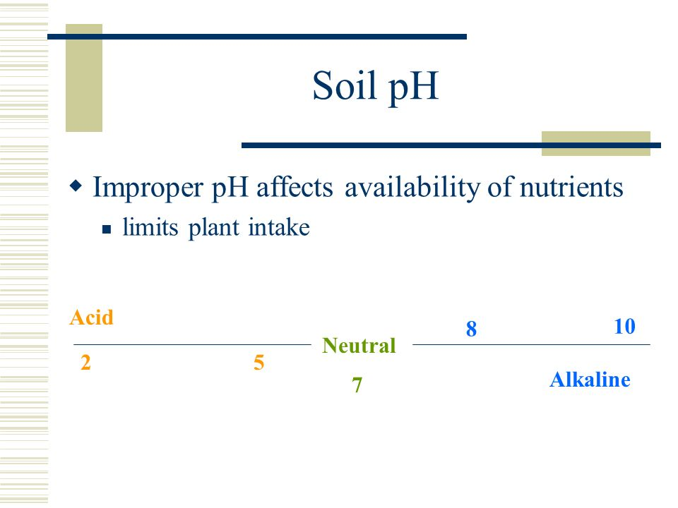 Soil pH Improper pH affects availability of nutrients