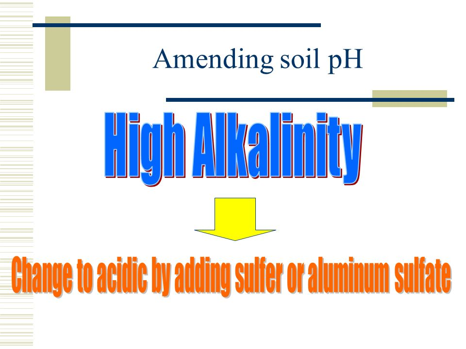Change to acidic by adding sulfer or aluminum sulfate