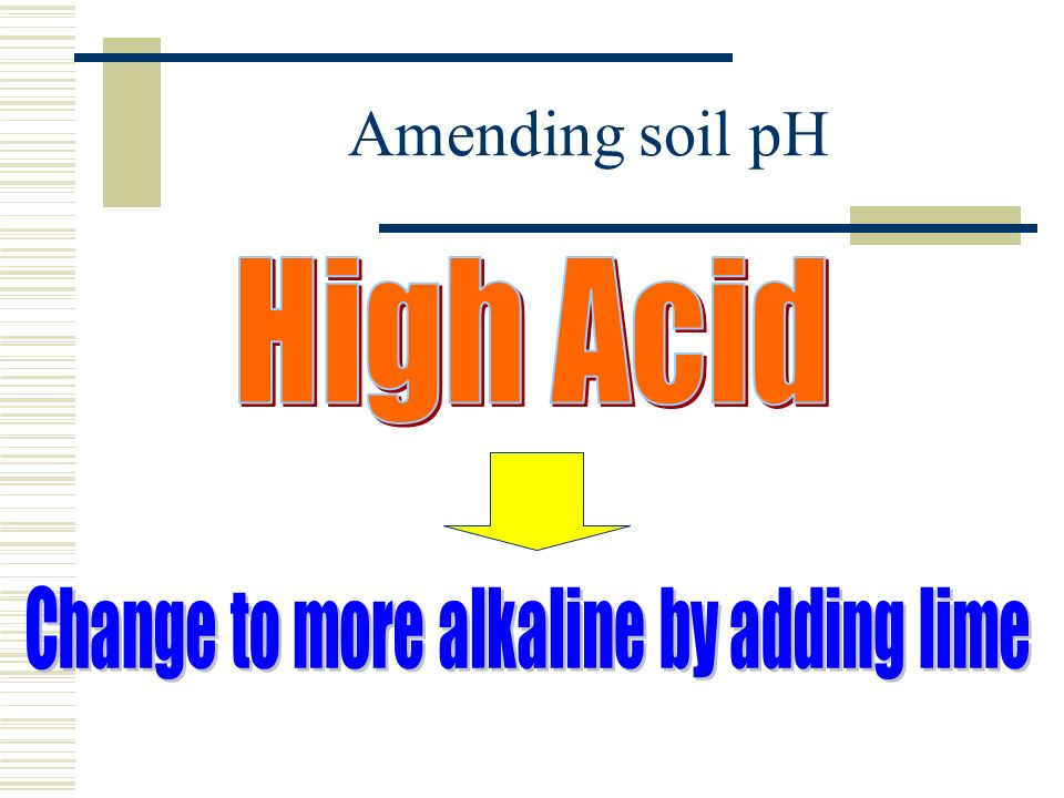 Change to more alkaline by adding lime