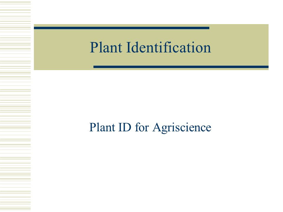Plant ID for Agriscience