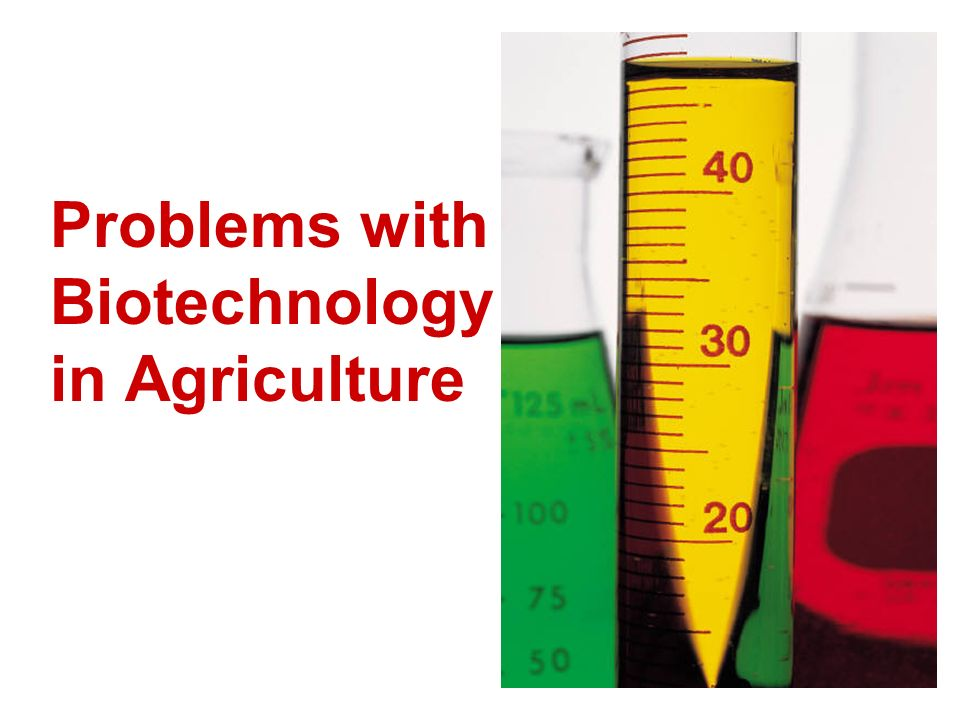Problems with Biotechnology in Agriculture