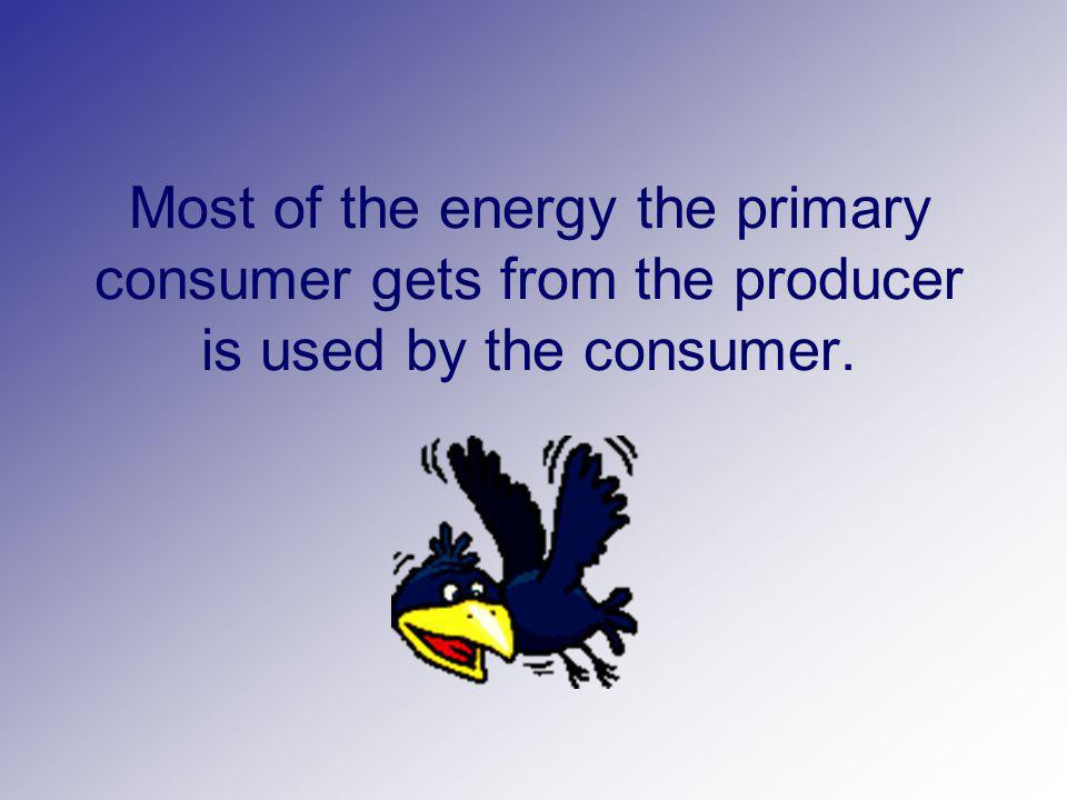 Most of the energy the primary consumer gets from the producer is used by the consumer.