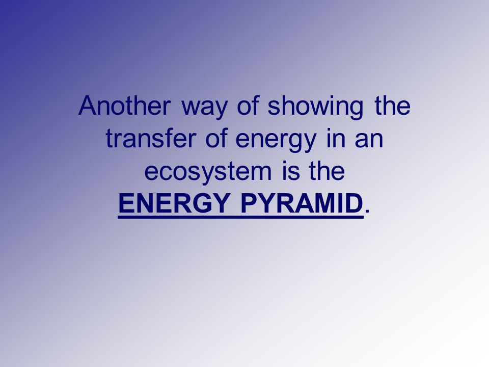 Another way of showing the transfer of energy in an ecosystem is the ENERGY PYRAMID.