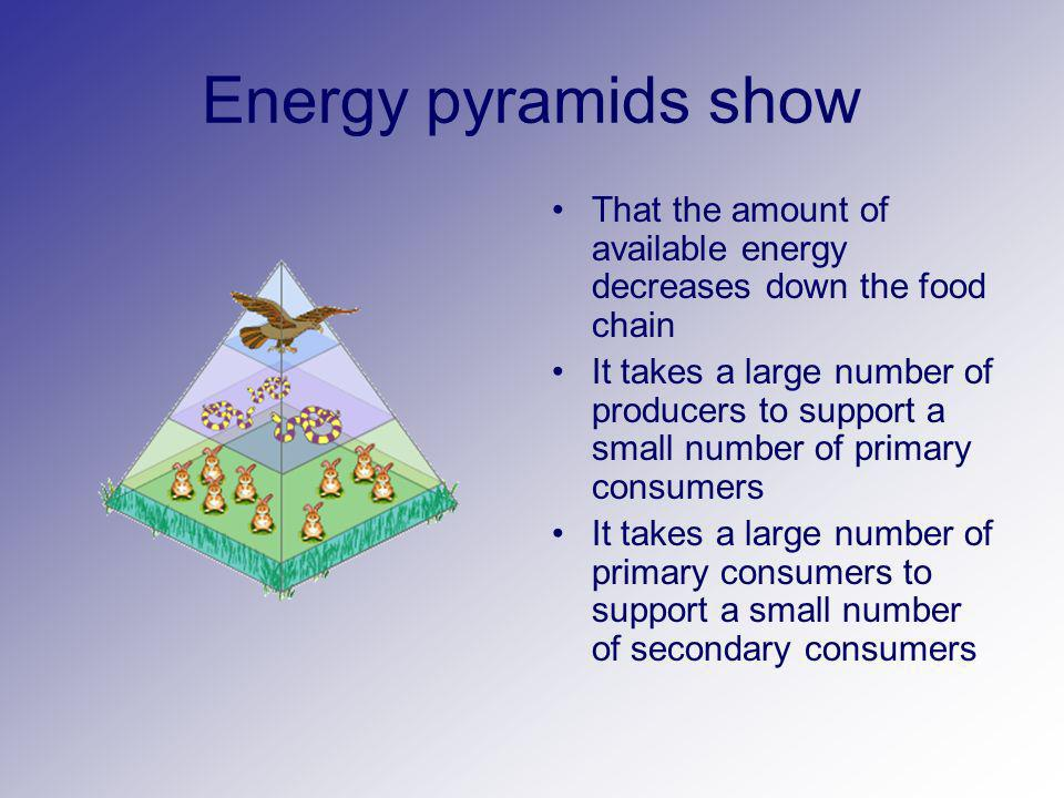 Energy pyramids show That the amount of available energy decreases down the food chain.
