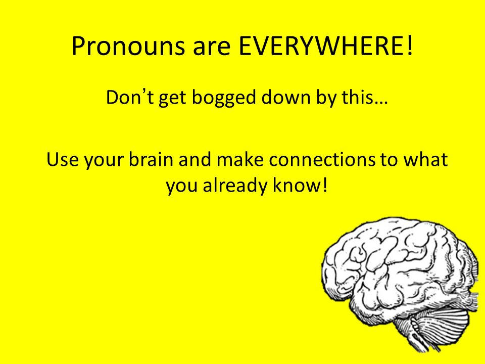 Pronouns are EVERYWHERE!