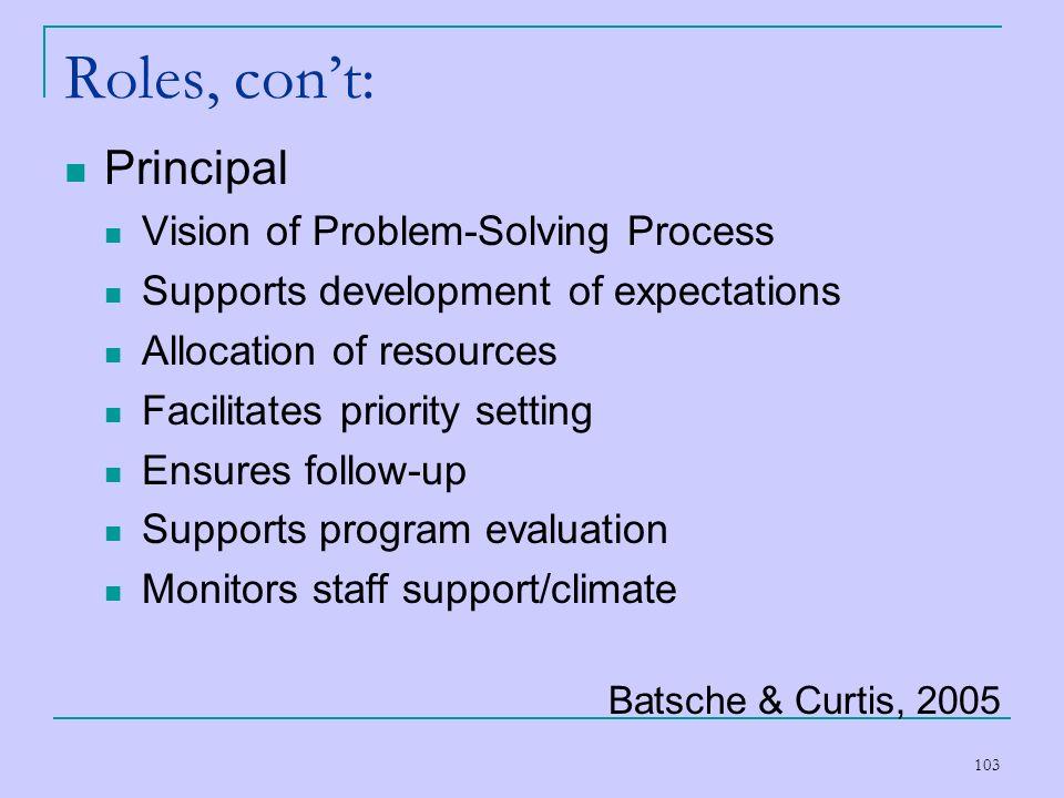 Roles, con't: Principal Vision of Problem-Solving Process