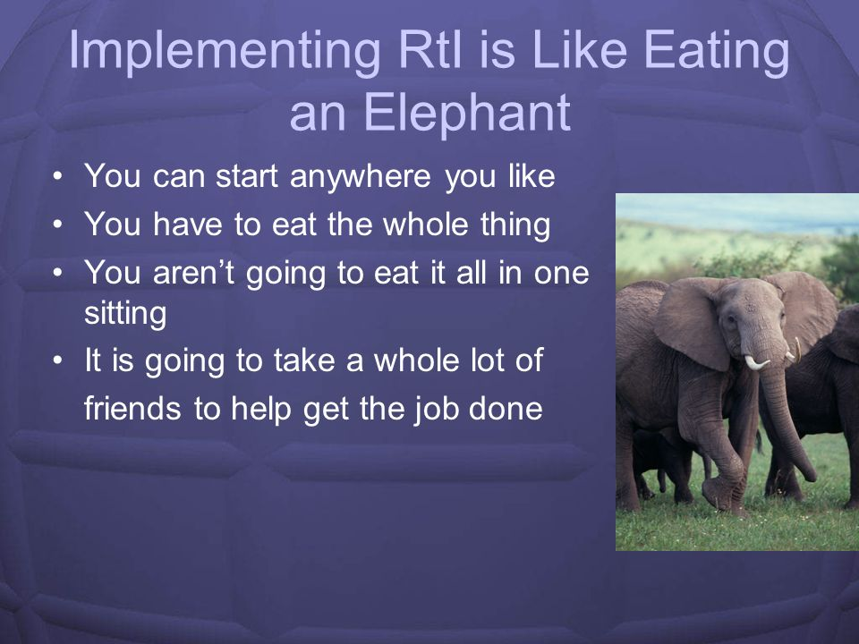 Implementing RtI is Like Eating an Elephant