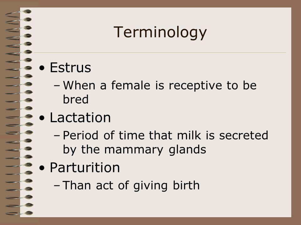 Terminology Estrus Lactation Parturition