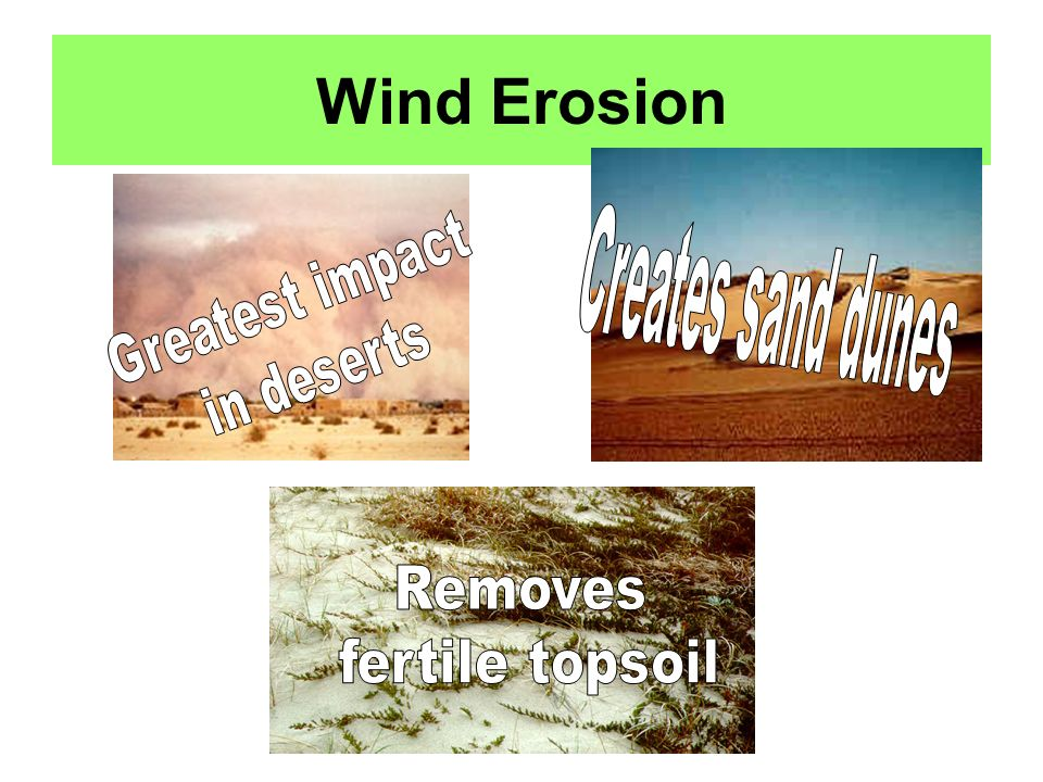 Wind Erosion Creates sand dunes Greatest impact in deserts Removes