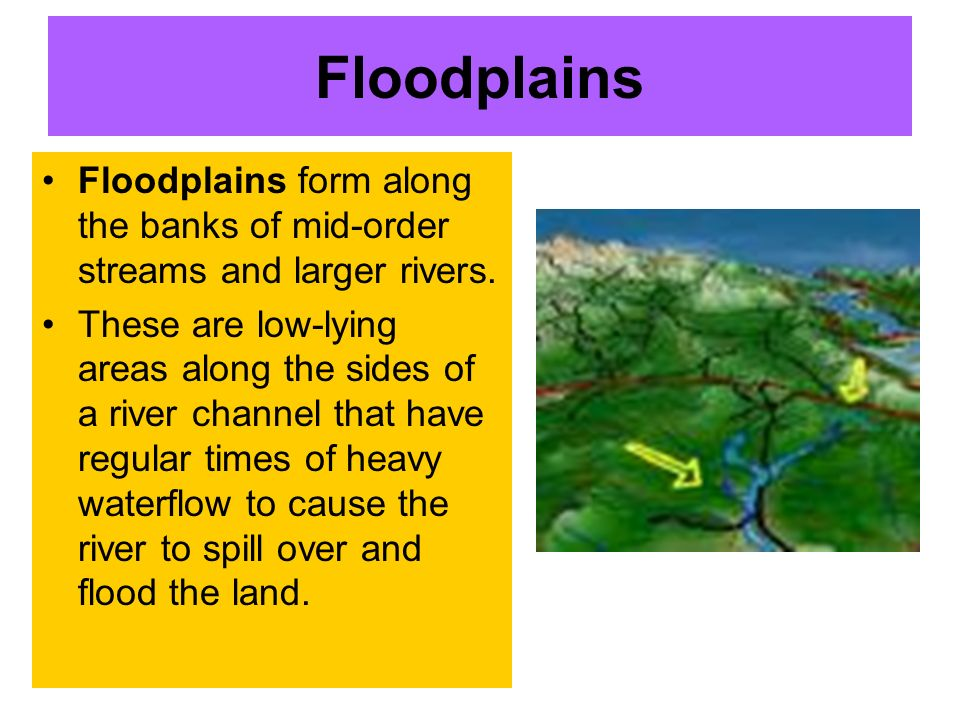 Floodplains Floodplains form along the banks of mid-order streams and larger rivers.