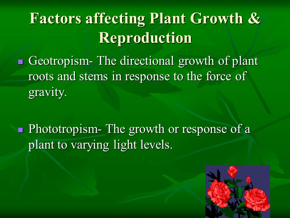 Factors affecting Plant Growth & Reproduction