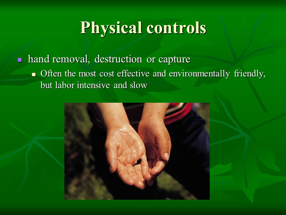 Physical controls hand removal, destruction or capture