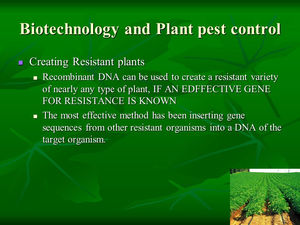 Biotechnology and Plant pest control