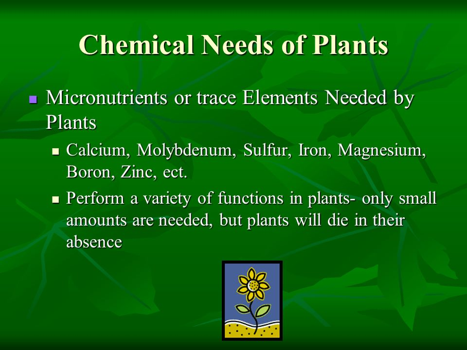 Chemical Needs of Plants