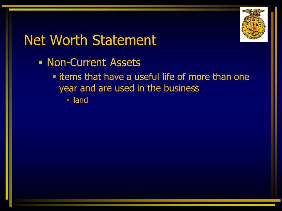 Net Worth Statement Non-Current Assets