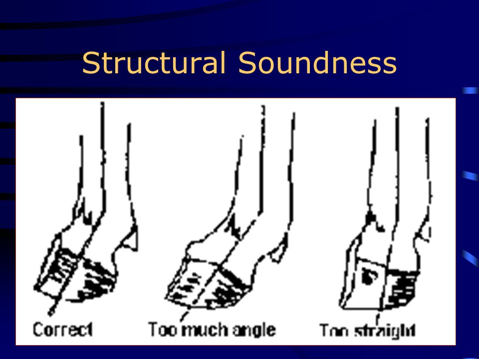 Structural Soundness
