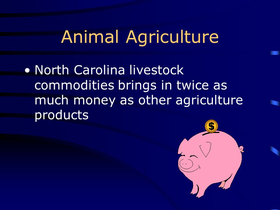 Animal Agriculture North Carolina livestock commodities brings in twice as much money as other agriculture products.