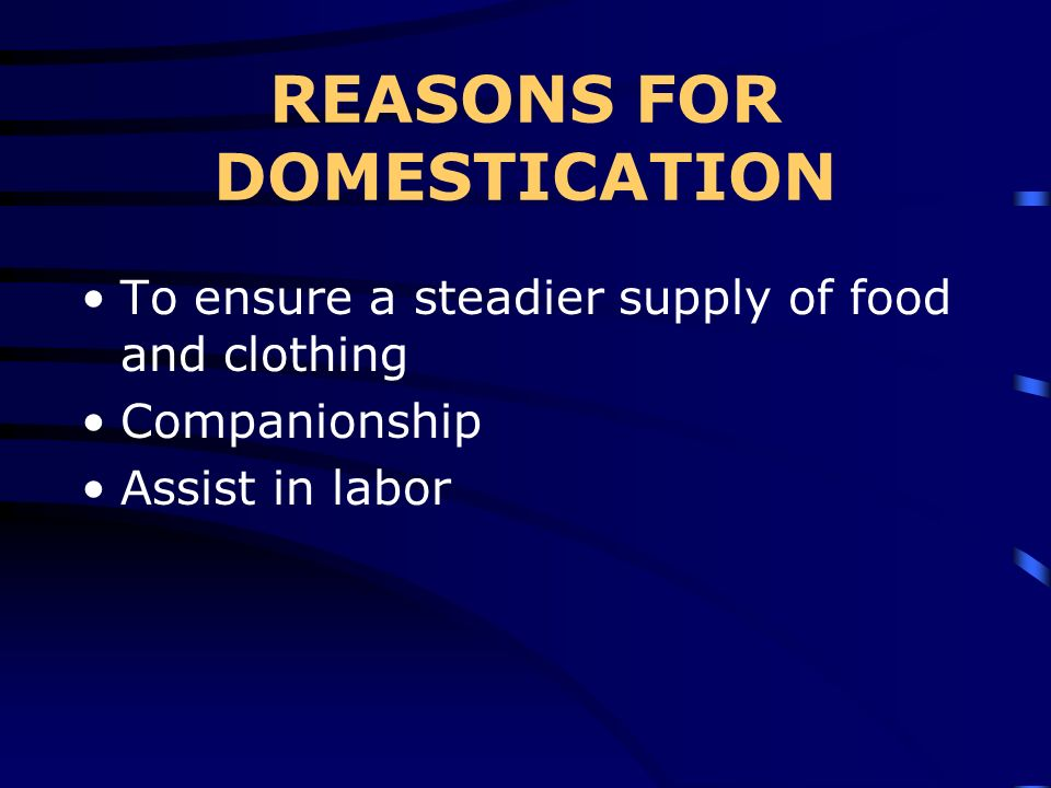 REASONS FOR DOMESTICATION