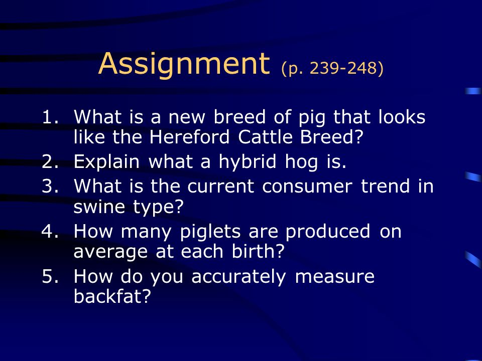 Assignment (p ) What is a new breed of pig that looks like the Hereford Cattle Breed Explain what a hybrid hog is.