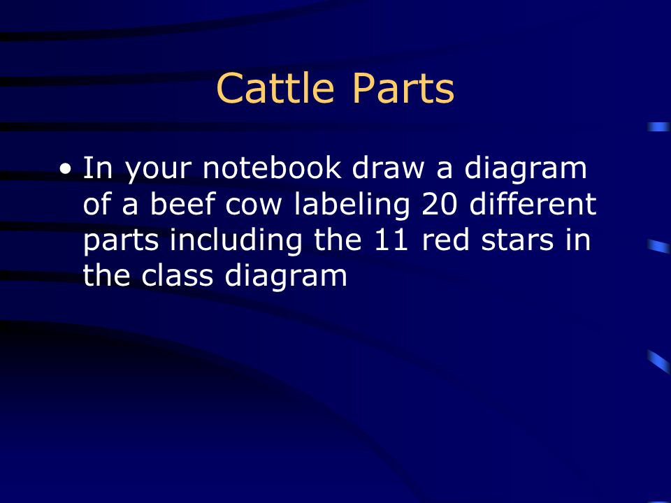 Cattle Parts In your notebook draw a diagram of a beef cow labeling 20 different parts including the 11 red stars in the class diagram.