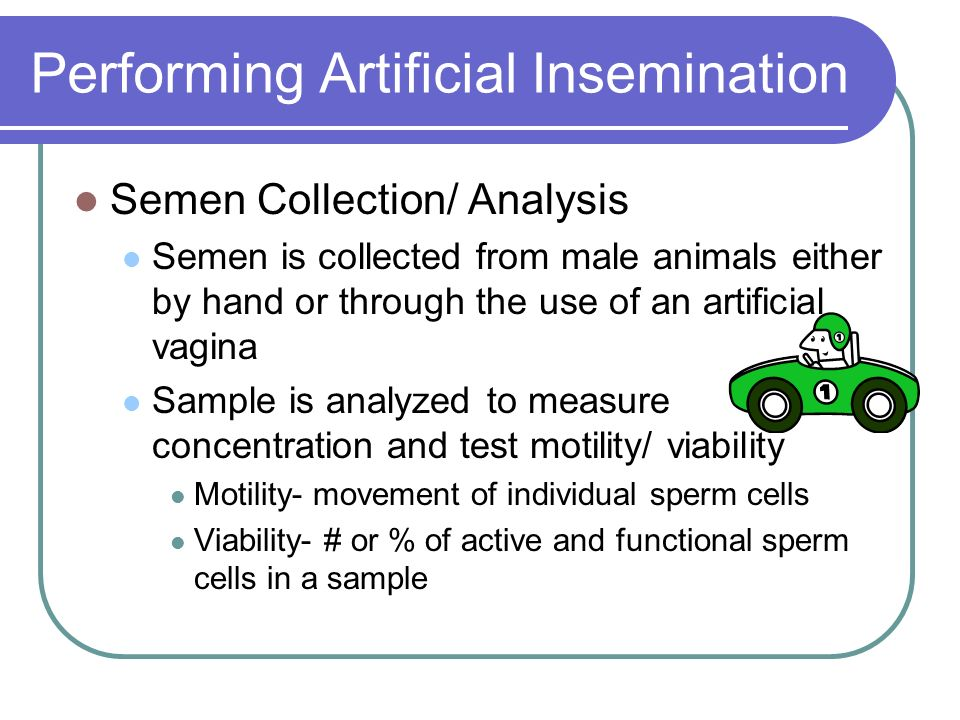 Performing Artificial Insemination
