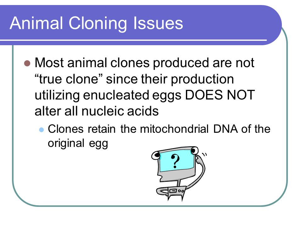 Animal Cloning Issues