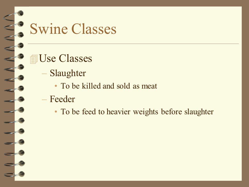 Swine Classes Use Classes Slaughter Feeder