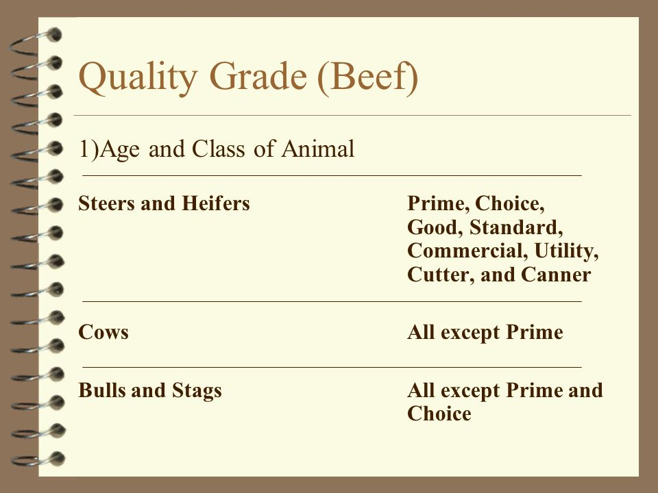 Quality Grade (Beef) 1)Age and Class of Animal