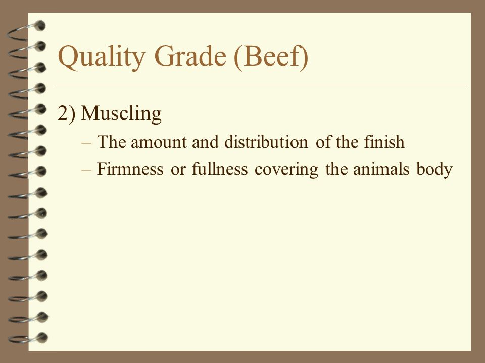 Quality Grade (Beef) 2) Muscling