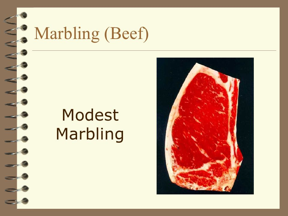 Marbling (Beef) Modest Marbling