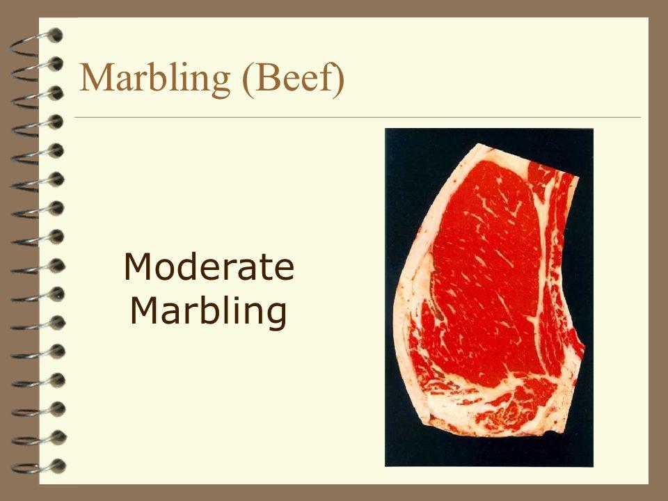 Marbling (Beef) Moderate Marbling