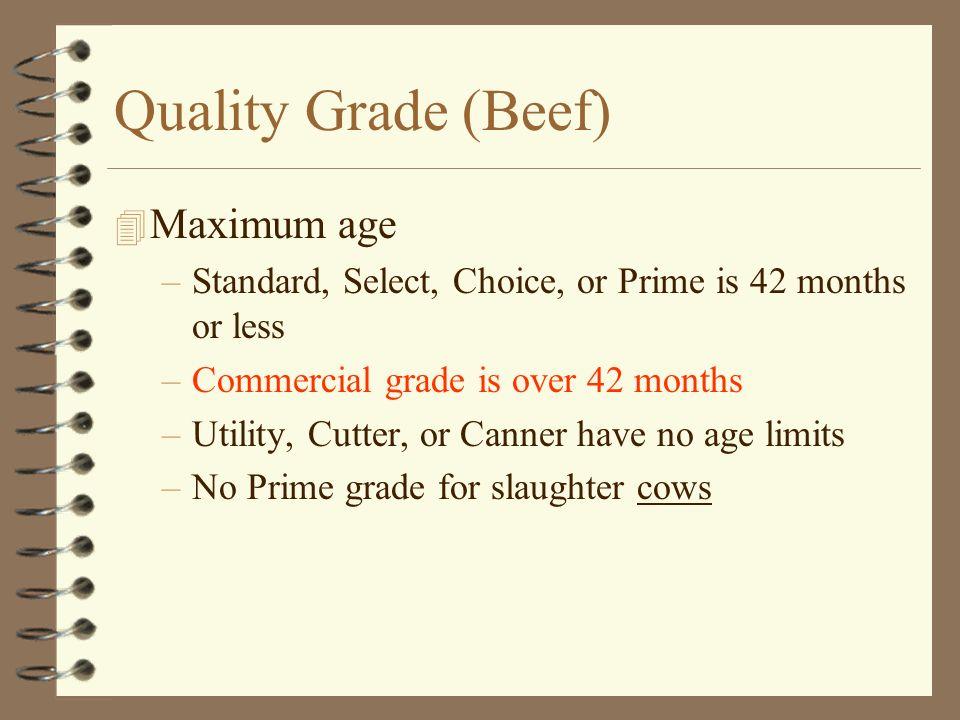 Quality Grade (Beef) Maximum age
